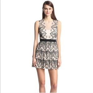 BCBG Collier Lace Ruffle Cocktail Dress NWT
